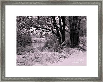 Quiet Morning After Snowfall Framed Print by Carol Groenen