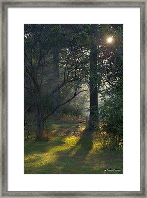 Framed Print featuring the photograph Quiet Morning by Tannis  Baldwin