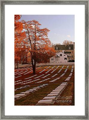 Framed Print featuring the photograph Quiet Respect by Geri Glavis