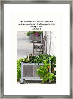 Quiet Resting Places Framed Print by Debbie Nobile