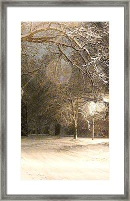 Quiet Road Framed Print