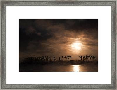 Quiet Sunrise With Fog And Palm Trees Framed Print