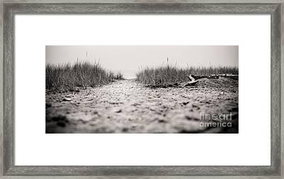 Quiet Walk Framed Print by Christina Klausen