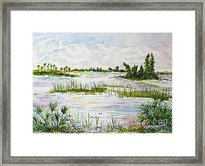 Quiet Waters Park Deerfield Beach Fl Framed Print