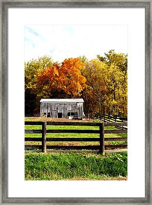Quietly Aging Framed Print