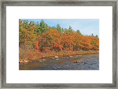 Quinapoxet River In Autumn Framed Print