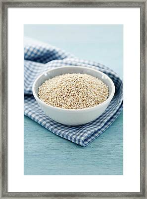Quinoa Seeds Framed Print by Gustoimages