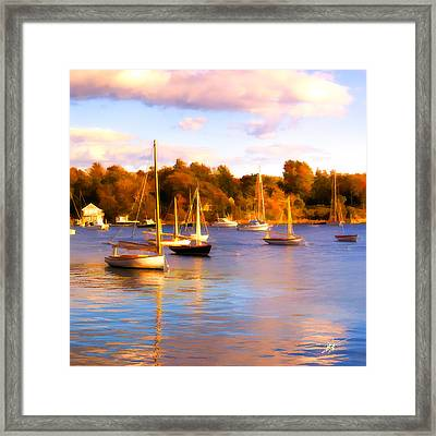 Quissett Evening Framed Print by Michael Petrizzo