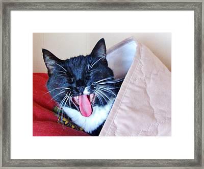 Quite I Am Sleeping Framed Print by Marilyn Diaz