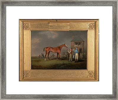 Quiz, After His Last Race At Newmarket Portrait Of `quiz Framed Print by Litz Collection