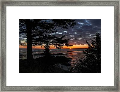 Quoddy Sunrise Framed Print by Marty Saccone