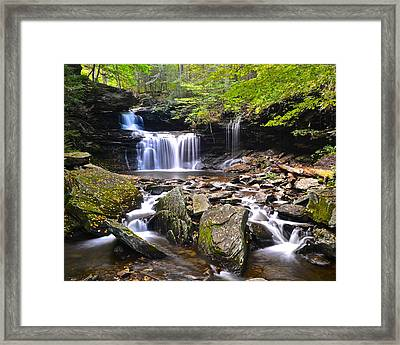 R B Ricketts Framed Print