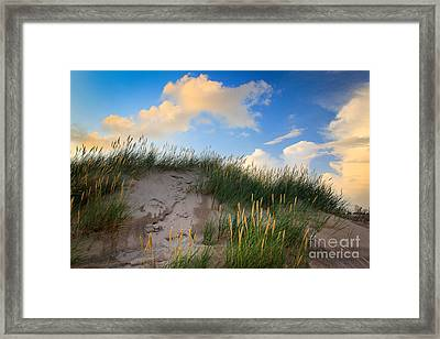 Raabjerg Dune Framed Print by Inge Johnsson