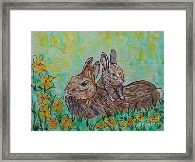 Rabbit And Baby Kitten  Framed Print by Ella Kaye Dickey