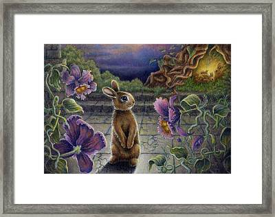 Rabbit Dreams Framed Print
