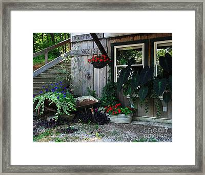 Rabbit Hash Morning Framed Print by Mel Steinhauer