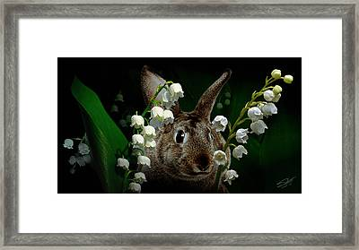Rabbit In The Lilies Framed Print