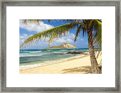 Rabbit Island 1 Framed Print