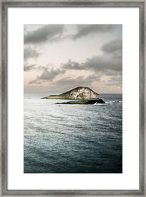 Rabbit Island Framed Print