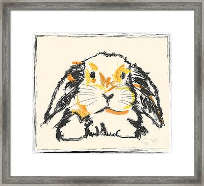Rabbit Jon Framed Print