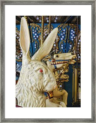Framed Print featuring the photograph Rabbit On The Carousel by Sami Martin