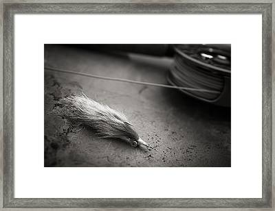 Rabbit Strip Fly Framed Print by Chad Simcox