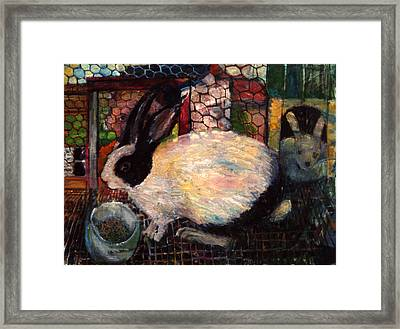 Rabbit Talk Framed Print