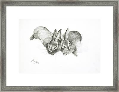 Rabbits Sleeping Framed Print by Jeanne Maze