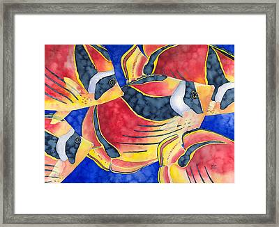 Raccoon Butterflyfish Framed Print