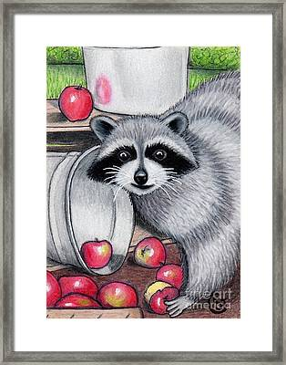 Raccoon -- Caught In The Act Framed Print by Sherry Goeben