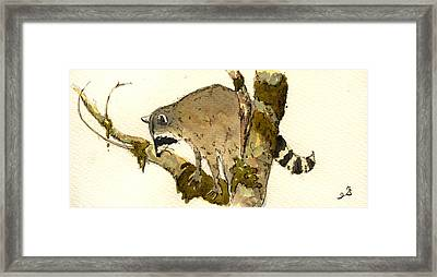 Raccoon On A Tree Framed Print by Juan  Bosco