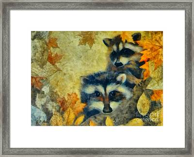 Raccoons  Framed Print by Elizabeth Coats