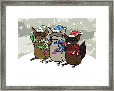 Raccoons Winter Framed Print by Christy Beckwith