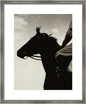 Race Horse Gallant Fox Framed Print by Edward Steichen