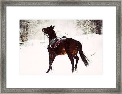 Race In The Snow 2 Framed Print