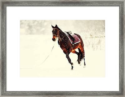 Race In The Snow I Framed Print