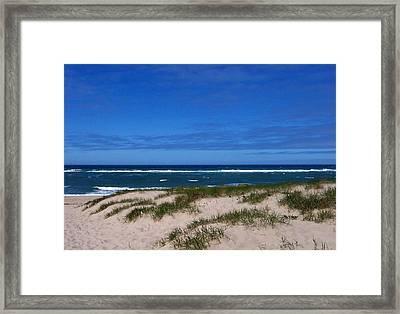 Race Point Beach Framed Print by Catherine Gagne