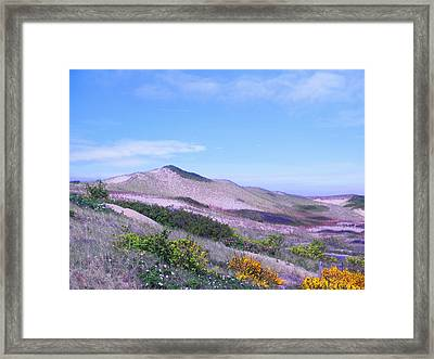 Framed Print featuring the photograph Race Point Dunes by David Klaboe