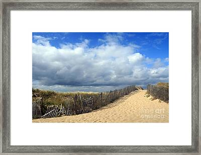 Race Point Framed Print