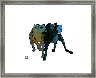 Race Framed Print by Richard Williamson