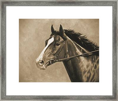 Racehorse Painting In Sepia Framed Print by Crista Forest