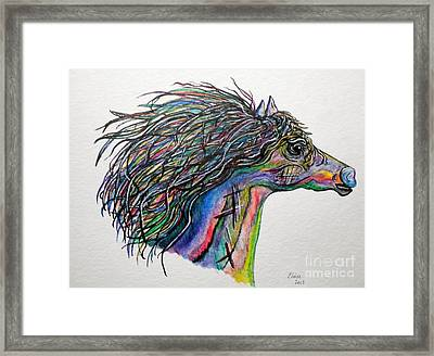 Racing The Wind ... A Story Painting Framed Print by Eloise Schneider