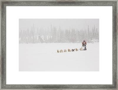 Racing Through The Falling Snow Framed Print by Tim Grams