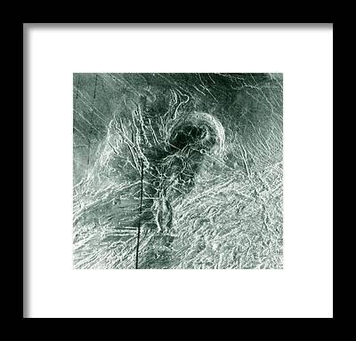 Laksmi Framed Prints