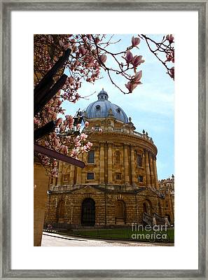 Radcliffe Camera Bodleian Library Oxford  Framed Print by Terri Waters