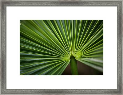 Radial Greens Framed Print