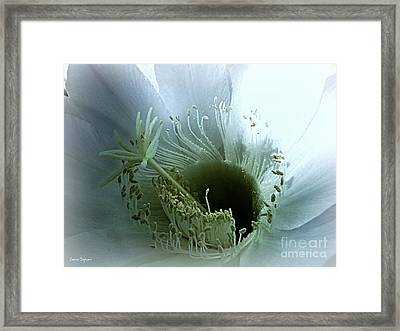 Radiant Being Framed Print by Leanne Seymour