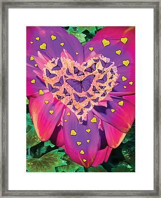 Radiant Butterfly Heart Framed Print by Alixandra Mullins