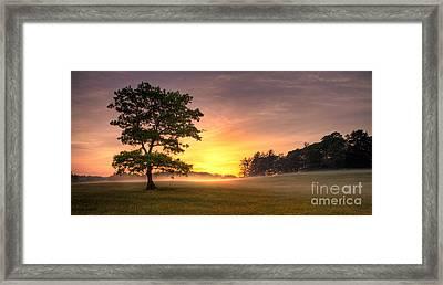Radiant Gold Sunrise In The Blue Ridge Framed Print by Dan Carmichael