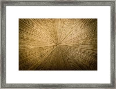 Radiation Framed Print by Randy Scherkenbach